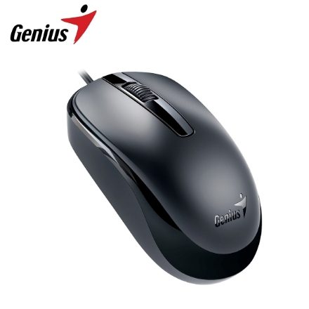 Picture of Mouse Genius (DX-120) USB